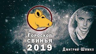 Гороскоп Кабан -2019. Астротиполог, Нумеролог - Дмитрий Шимко