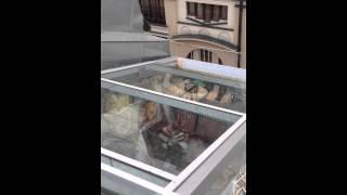 Раздвижная стеклянная крыша(, 2013-12-19T04:11:53.000Z)