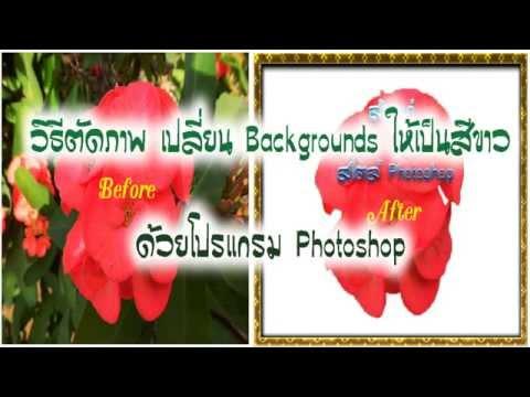 วิธีตัดภาพ เปลี่ยนพื้นหลังให้เป็นสีขาว ด้วยโปรแกรม Photoshop : Sivakorn