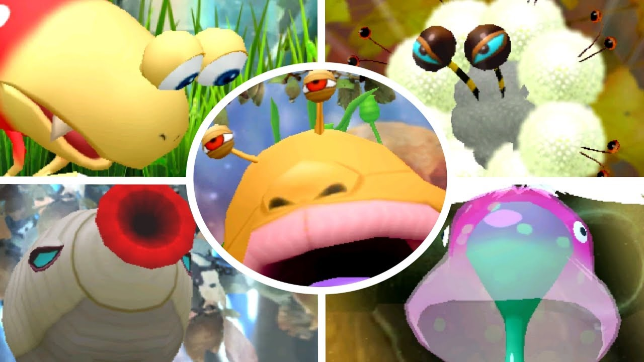 Hey Pikmin All Bosses No Damage Youtube