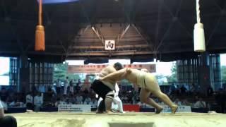 World sumo championships  SOKOLOVSKIY (UKR) vs TSERTSVADZE (GEO)