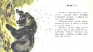 """Е.Чарушин. Из сборника """"Кто как живёт"""" - """"Медведь"""" (илл. Е.Чарушин)"""