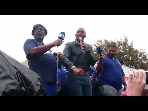 DA to march to Gupta Saxonwold compound– Rosebank Killarney Gazette