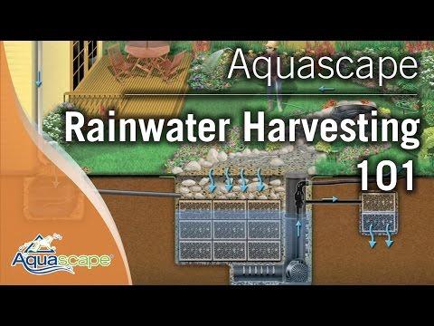Aquascape's Rainwater Harvesting 101
