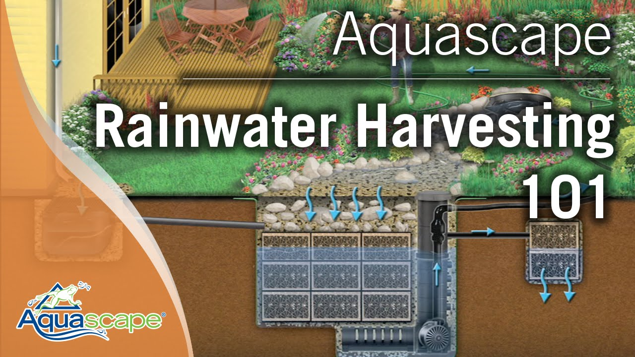 Rainwater Harvesting System, Rain Collection System | Aquascape