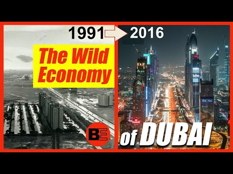The Wild Economy and Business of the UAE