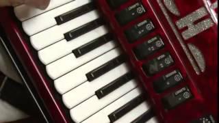 06 - Bugio Assanhado - Adelar Bertussi (O Tropeiro da Música Gaúcha)