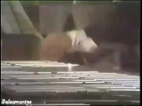 """""""Ganas"""" Ruben Blades y seis del solar"""