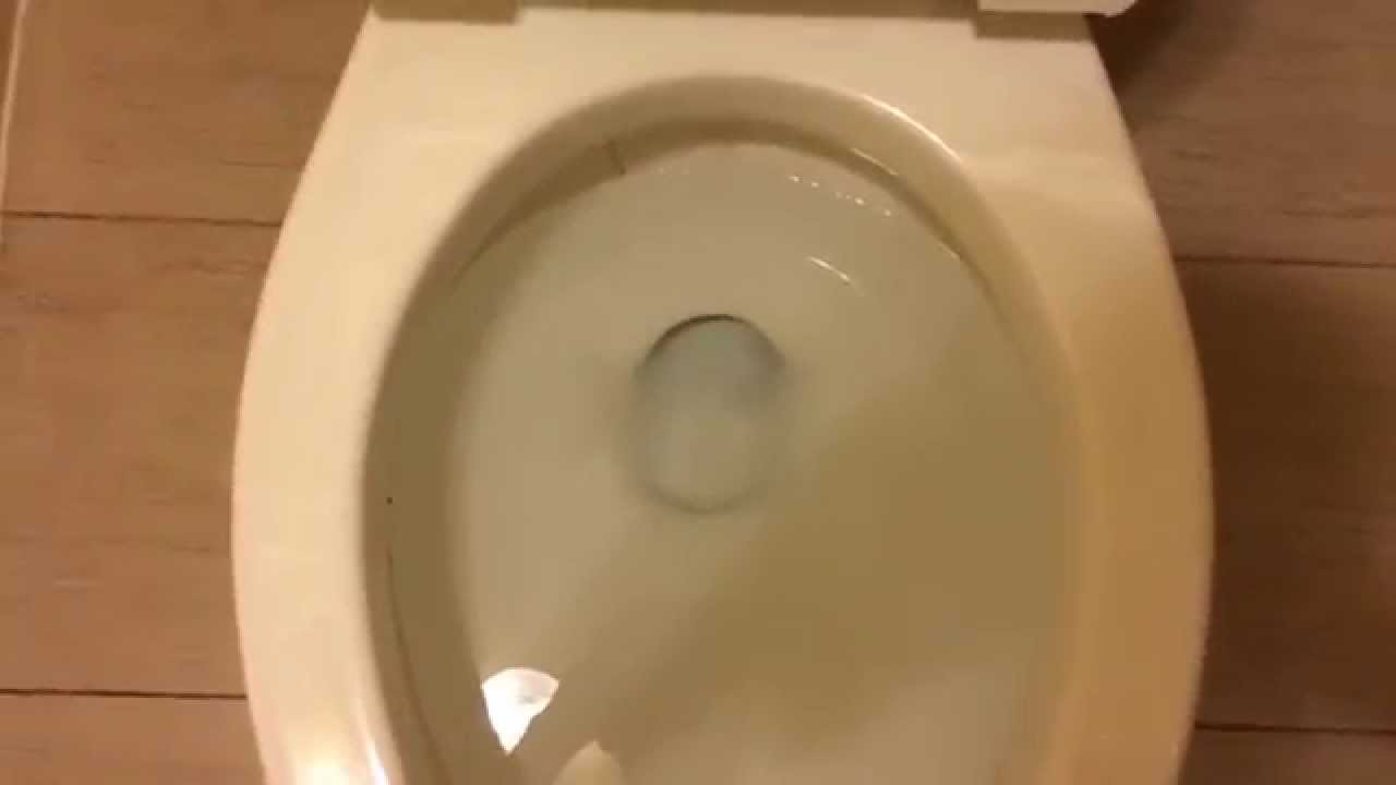 1979 American Standard Cadet Toilet 7 Flushes At Hotel