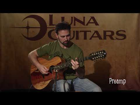 Vista Eagle 12 String w/ Fishman Preamp by Luna Guitars