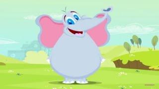 L'elefante con le ghette - Compilation 20 min di Canzoni per Bambini di Dolci Melodie