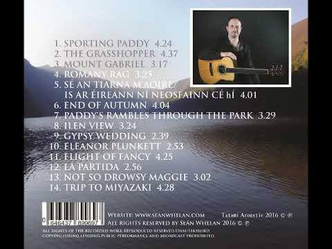 Seán Whelan From Gray to Blue CD Sample