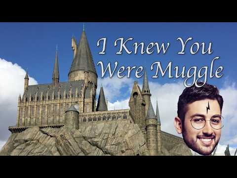 I Knew You Were Muggle (Taylor Swift PARODY) - Young Jeffrey's Song of the Week