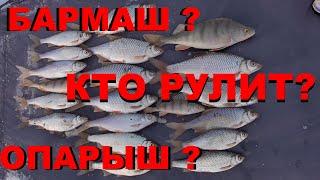 Рыбалка на Бармаша Федоровка Эксперимент