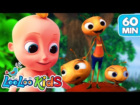 Cantec nou: The Ants Go Marching - The BEST SONGS for Kids   LooLoo Kids