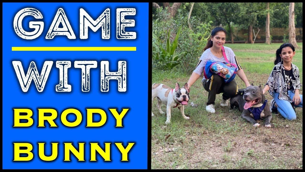 Brody Bunny kiski Side Jayenge 😱 Game with Dogs   Harpreet SDC