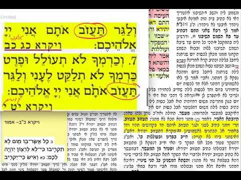 הדף היומי מסכת תמורה דף ו Daf yomi temurah daf 6