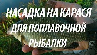 Насадка для карася. Успешная поплавочная рыбалка на рыбу карась(Поплавочная рыбалка на карася. Как готовится эффективная насадка для ловли карася поплавочной удочкой,..., 2016-04-27T10:07:20.000Z)