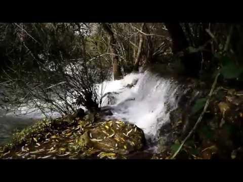 Water of Love - Felix Maria Woschek
