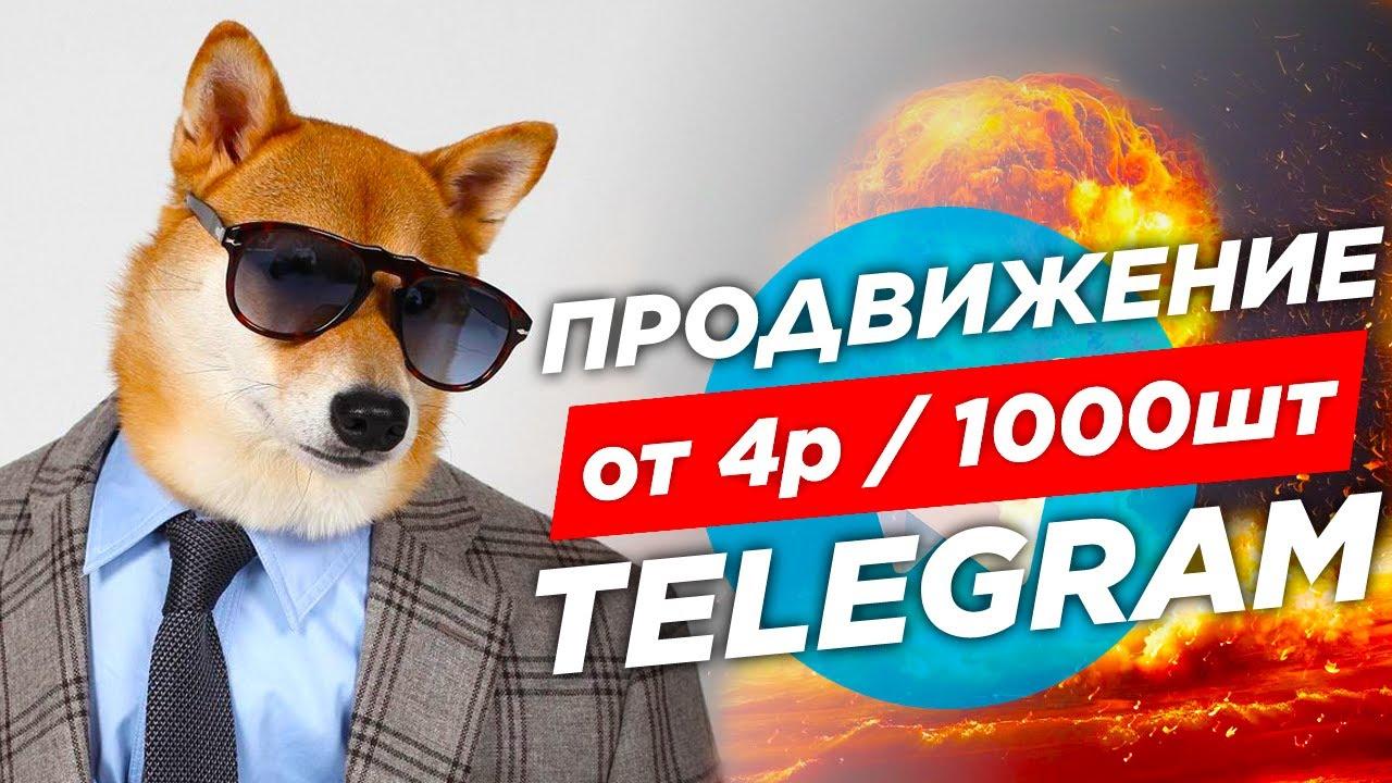 накрутка телеграм канал