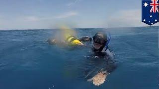 ถูกซัดเข้าถิ่นฉลาม ชายชราลอยคอ 18 ชั่วโมง