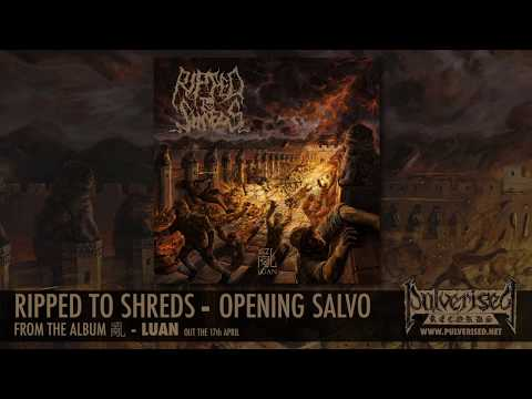 "RIPPED TO SHREDS ""Opening Salvo"""