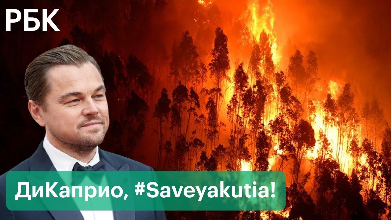 Леонардо ДиКаприо против пожаров в Якутии. Актер готов помочь, власти  региона просят не вмешиваться - YouTube