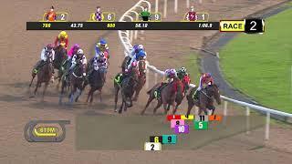 Vidéo de la course PMU CLASS 5- 1700 M.