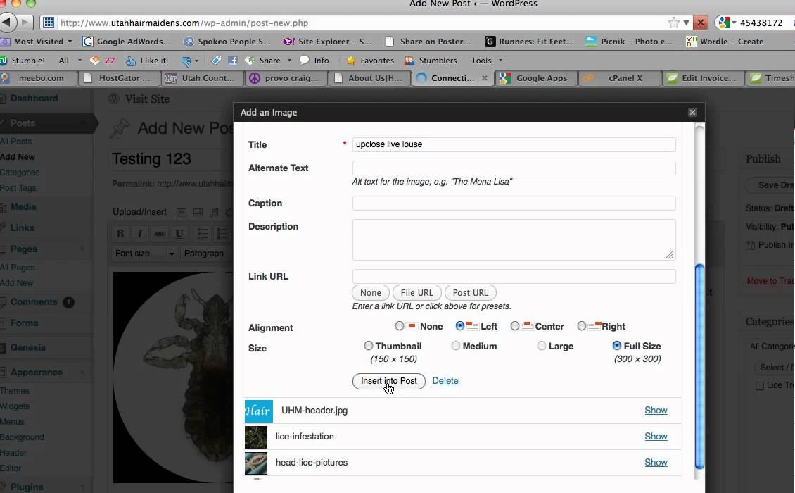 wordpress how to add plugin