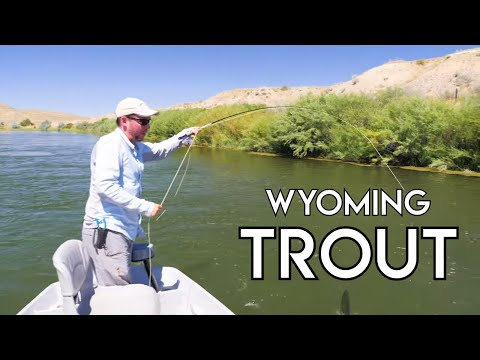 Wyoming Trout | North Platte River