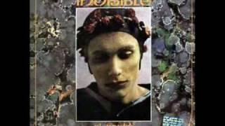 Invisible - Las golondrinas de plaza de mayo