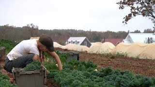 Homes sprouting up around farms