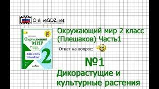 Задание 1 Дикорастущие и культурные растения - Окружающий мир 2 класс (Плешаков А.А.) 1 часть