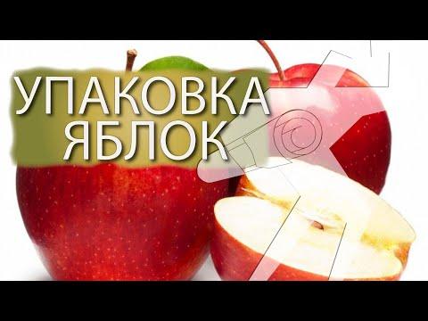 видео: Упаковка яблок в индивидуальный пакет на Bronkomatic-450SE