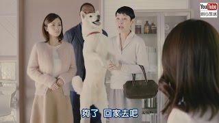 上戶彩、小泉今日子、樋口可南子SoftBank 白戶家「父親回來」篇【日本廣...