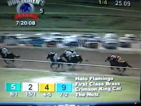 Halo Flamingo winning the Omaha Stakes 2008