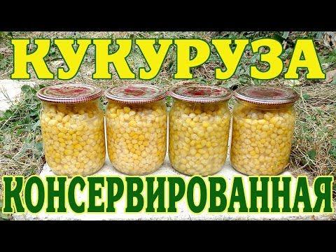 Вареная кукуруза - польза и вред, калорийность, свойства и
