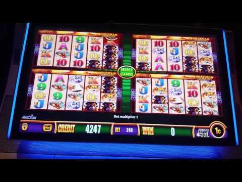 Wonder 4 Slot Play Buffalo Gold All Bonuses 5 4 17 Doovi