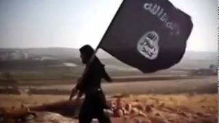 Beitrag: ISIS - Wer hinterfragt diese Terroristen?
