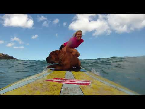 Watch Bethany Hamilton Surfing With Her Adorable Shar-Pei