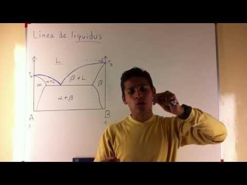Diagrama de Fases 3 - Linea de Liquidus, Linea de Solidus y Linea de Solvus