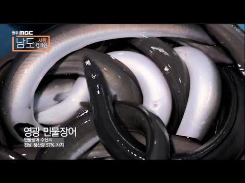 [광주mbc 남도사랑캠페인] 해양자원의 보고, 영광의 힘이 시작됩니다!