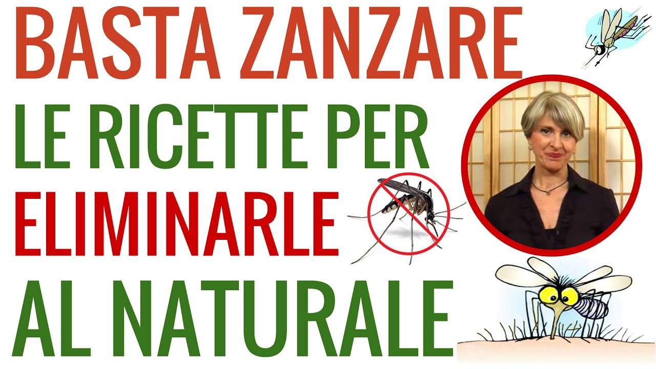 Come fare in casa un anti zanzara naturale con simona - Rimedi contro le zanzare in giardino ...