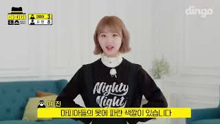 [ENG] Dingo Music LOONA Mafia Dance Preview (201022)
