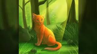 Слайд-шоу коты-воители: Огнезвёзд(Рыжик, Огонёк,Огнегрив)