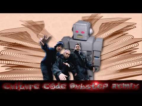 Beastie Boys  Intergalactic Culture Code Dubstep remix