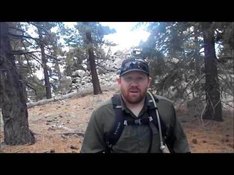 Delamar Mountain Hike - (Big Bear Lake - San Bernardino National Forest)