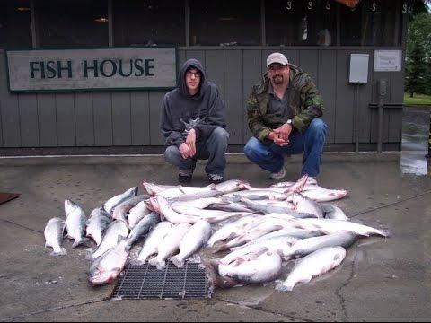 Legal addiction kenai river dip netting for red salmon for Kenai river fish counts