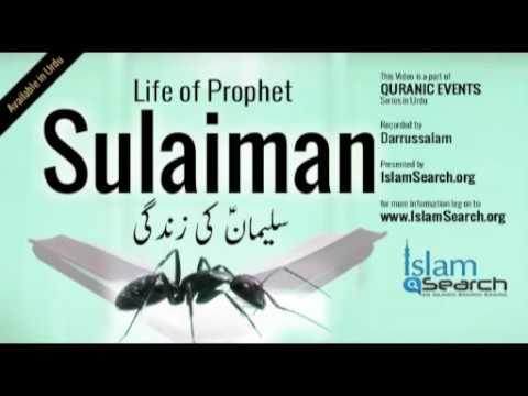 Events of Prophet Sulaiman's life (Urdu) -