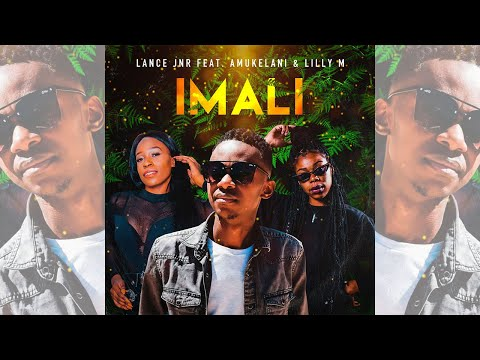 lance-jnr---imali-feat-amukelani-&-lilly-m-(official-audio)